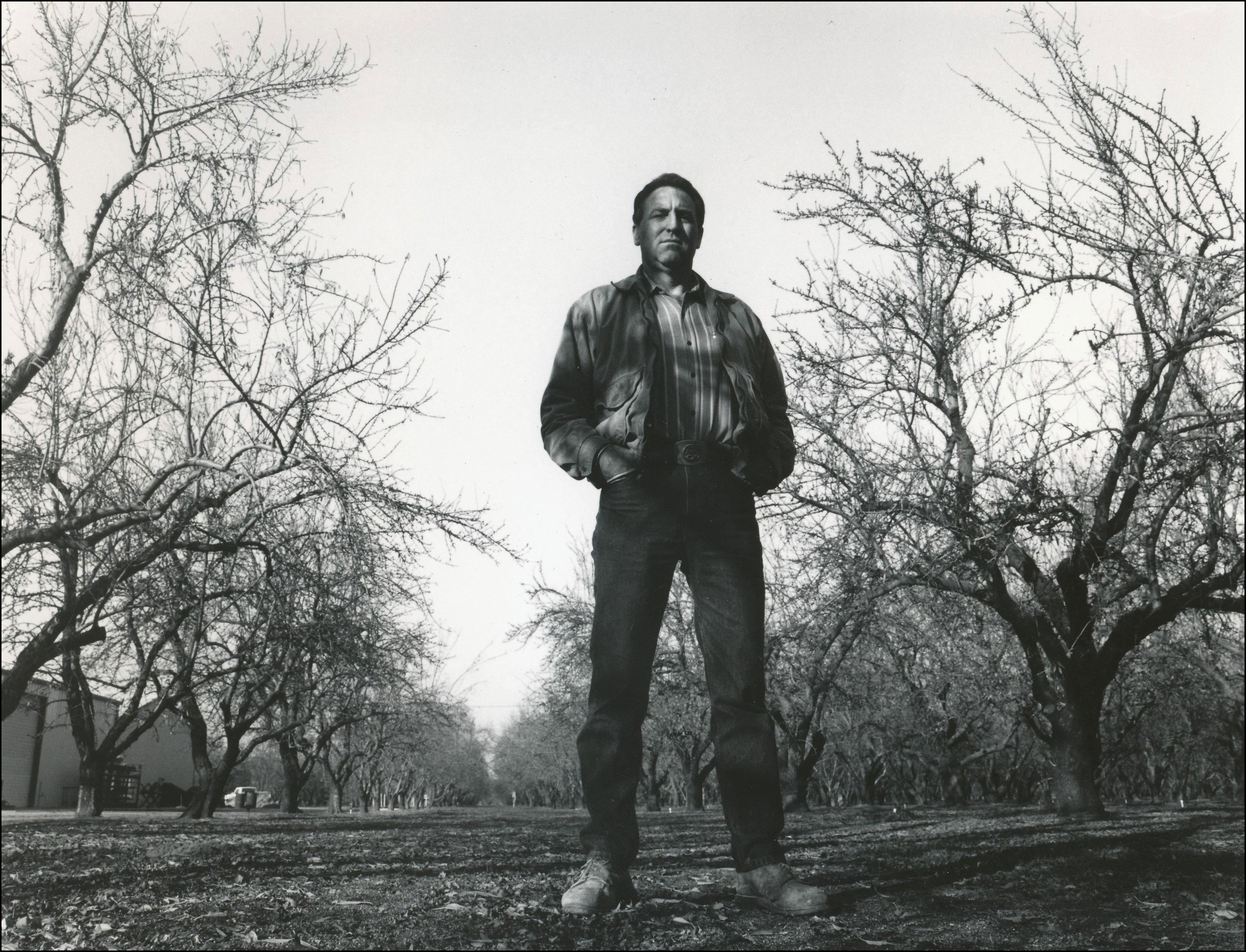 Man standing outside in trees with hands in pocket