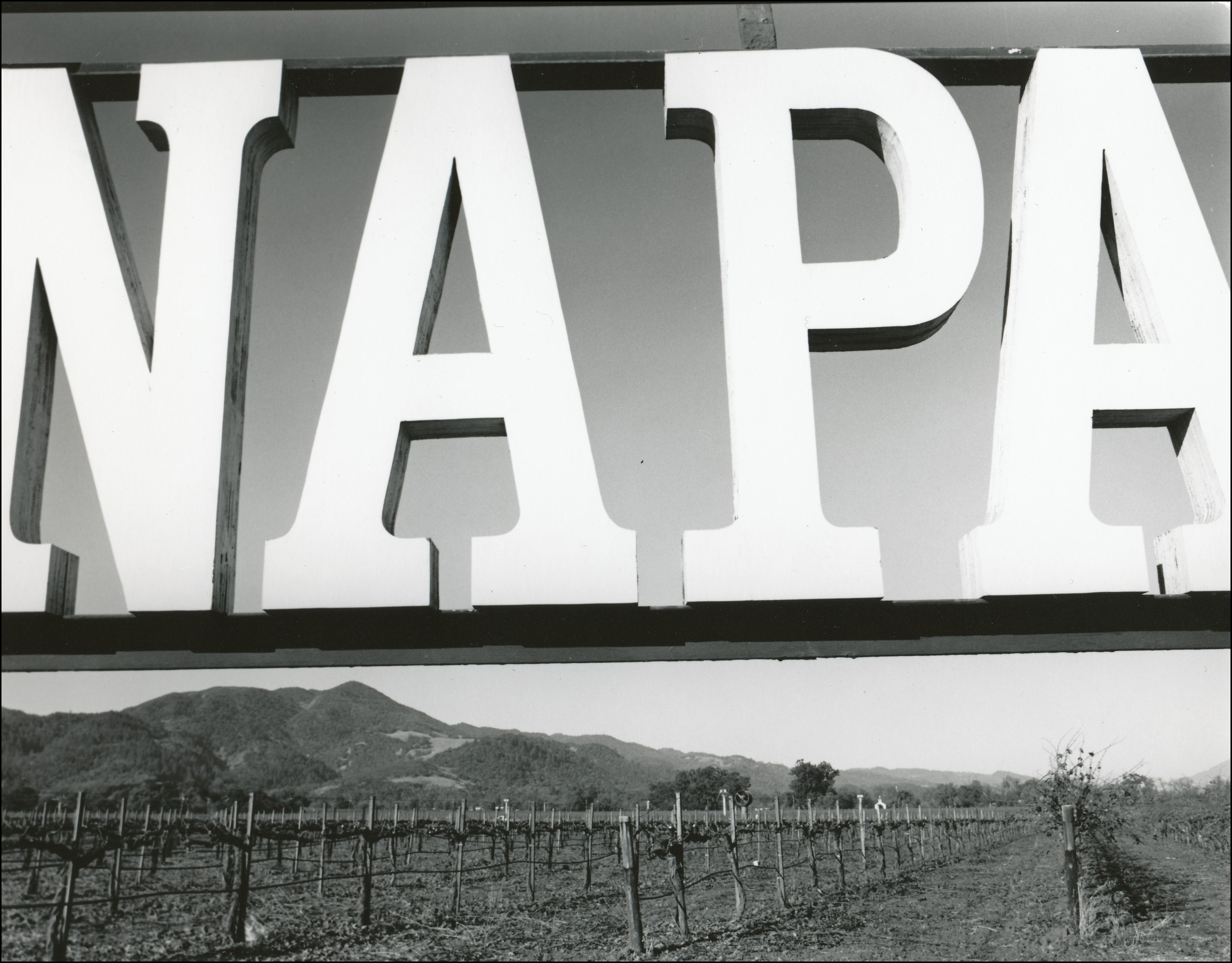 Large NAPA sign with vineyards in the background